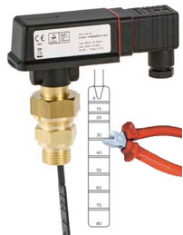 Paddle flow switch | FSW301